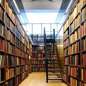 Библиотеки Островского