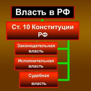 Органы власти Островского